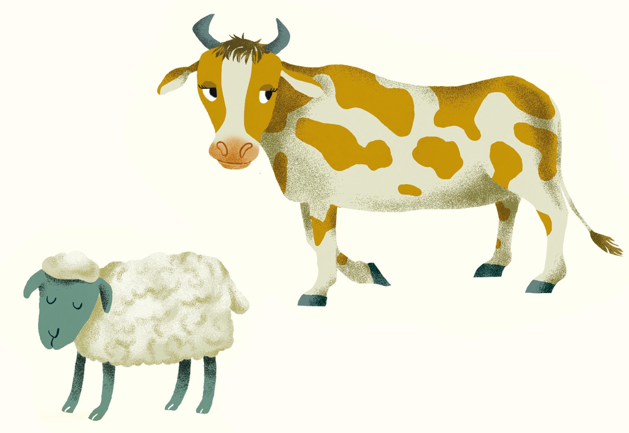 Annalisa Papagna illustration - Farm animals, cow and sheep