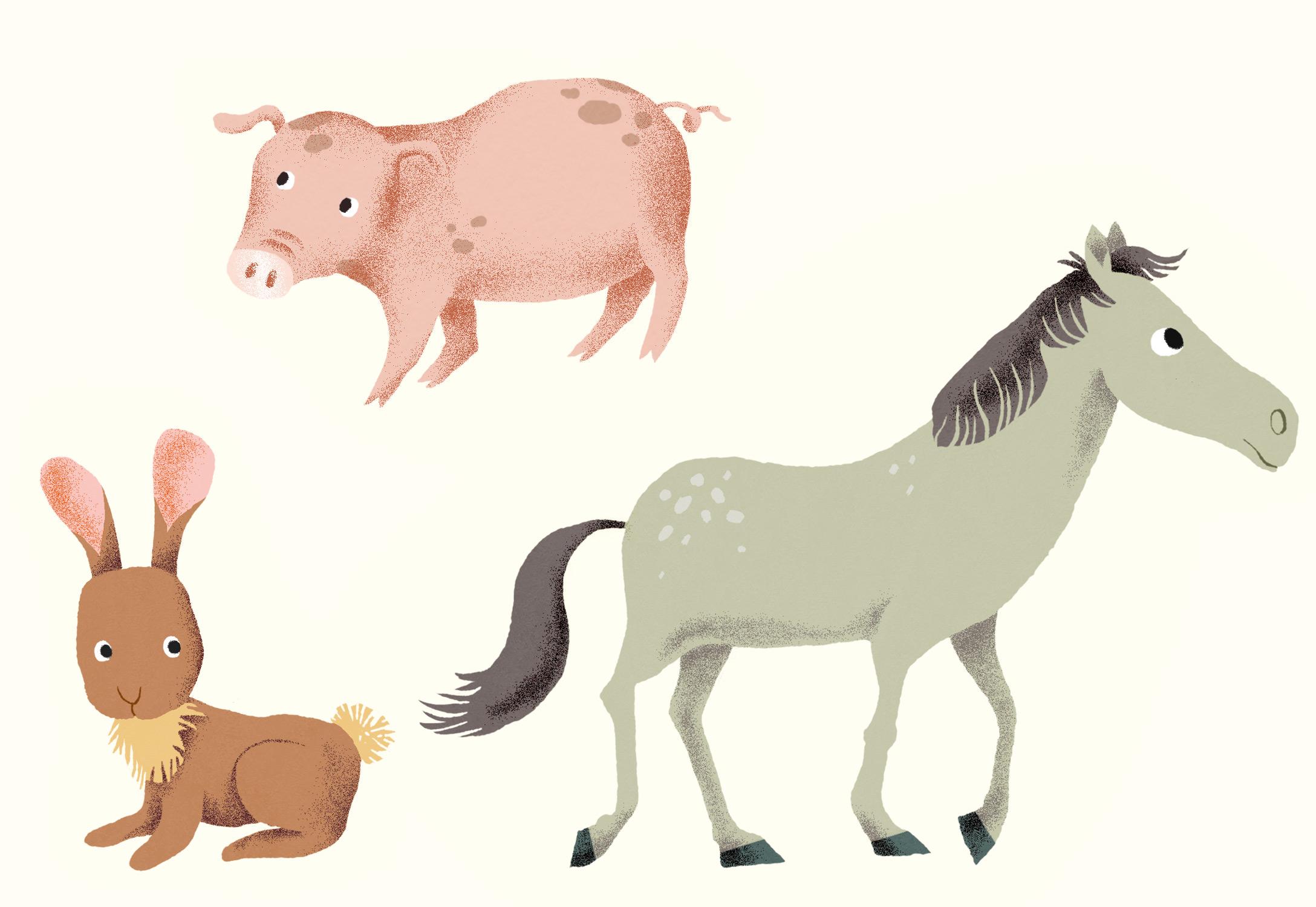 Annalisa Papagna illustration - Farm animals: horse, pig, bunny