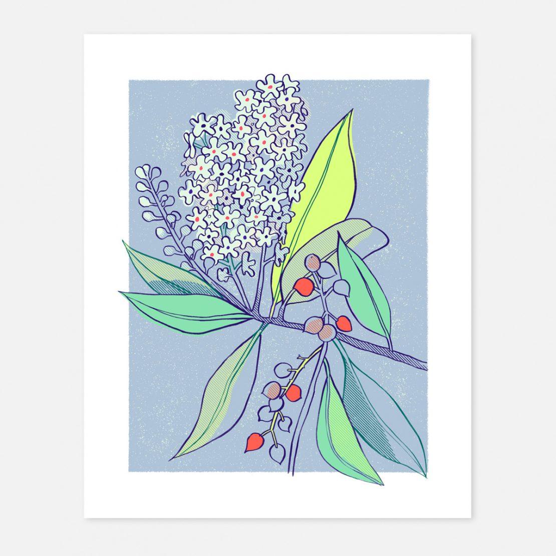 Annalisa Papagna shop - Laurocerasus print 24 x 30 cm