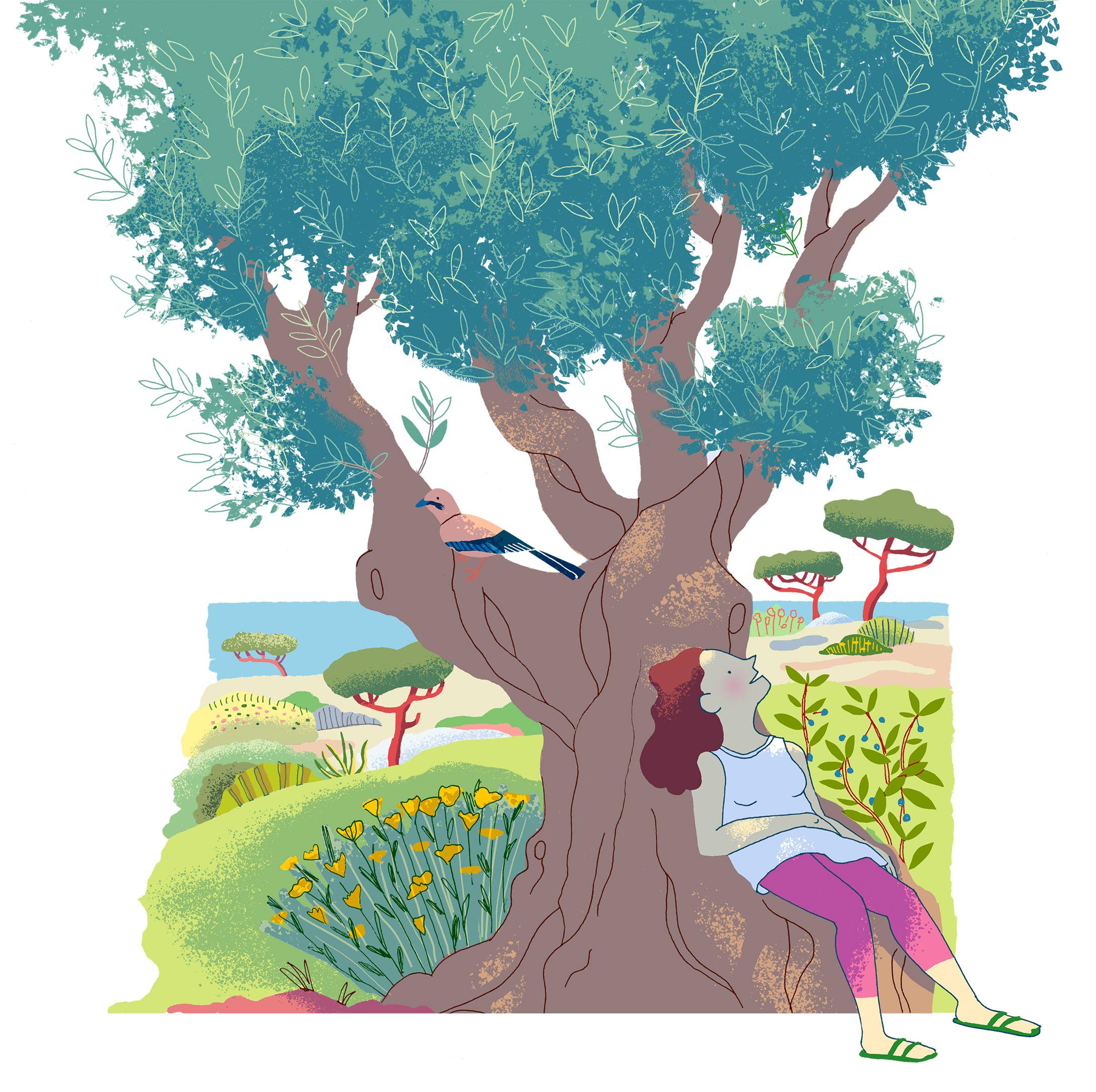 Annalisa Papagna illustration - Olive tree