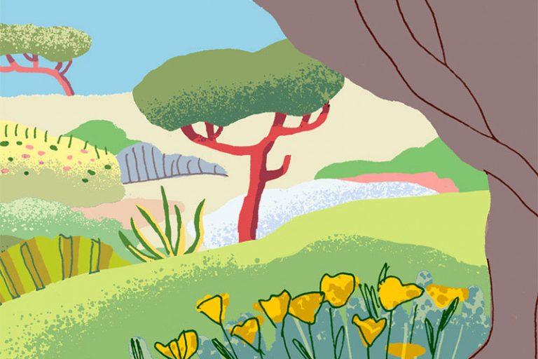 Annalisa Papagna illustration - Olive tree (detail)